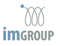 IM Group, vehicle dealership, blue and grey logo